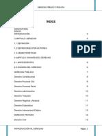 Derecho Publico y Privado - Copia