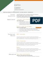 programer - CV Template.docx