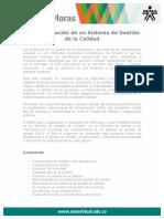 Fundamentacion SGC NTC ISO9001