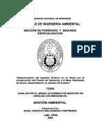 maldonado_ch.pdf