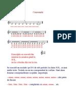 6. Consoanele.doc