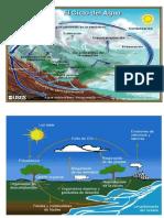 Ciclo Del Carbono y Agua 2