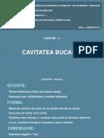Curs_4_Cavitatea Bucala, Limba, Gladele Salivare