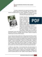 10 PDFsam 172605189 Mercado de Calzado Bata
