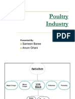 organisation study in Suguna poultry form | Poultry | Poultry Farming