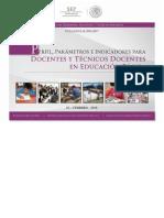 perfil y parametros Docente_Tecdocente.pdf