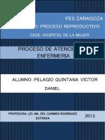 procesodeatenciondeenfermeriaydiagnostico-hospitaldelamujer-130609230000-phpapp01.docx