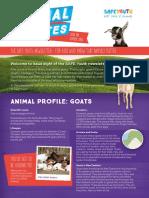 Animal Bites newsletter #8