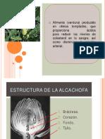 alcachofa VEGETARIANA