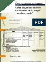 Exposición- Cambios Biopsicosociales en El Embarazo.