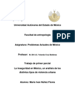 Problemas Actuales de Mexico