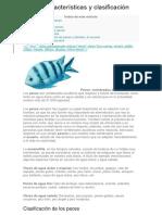 peces y anfibios.docx