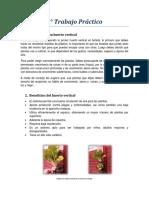 trabajo practico 2 HUERTOS VERTICALES.pdf