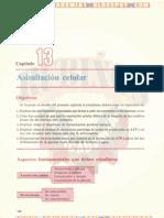 ASIMILACIÓN CELULAR