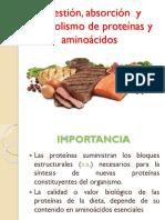Digestion y Metabolismo de Proteinas y Aminoacidos (1)