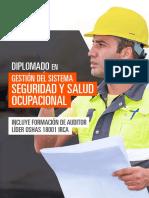 Diplomado en Gestión Del Sistema de Seguridad y Salud Ocupacional