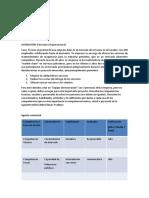 Deber Estructura Organizacional