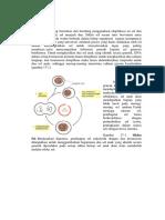 Tahapan Siklus Sel Kontrol Pemelahan Sel Dan Mekanisme Sel