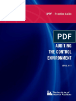 Auditing the Control Environment