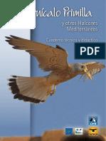 El Cernícalo Primilla y Otros Halcones