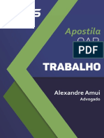 Apostila-Direito-Trabalho-Alexandre-Amui.pdf