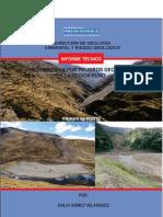 ZONAS_CRITICAS_PUNO_2014.pdf
