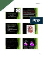 Cardiopatias Congenitas Zm