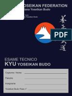 Progr Tec Nico Kyu 2010