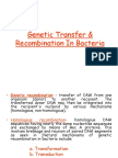 Genetic Recombination (1)