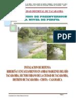 163490825-PIP-DEFENSA-RIBERENA.pdf