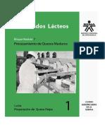 Procesamientos Quesos SENA.pdf