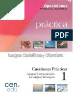 Cuestiones Practicas, 1) Leng. y Com. Lenguas