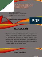 Compactación en Las Islas de Dubay-1