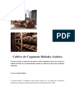 Cultivo de Cogumelo Shiitake Axênico