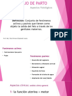 Fisiología Tde p