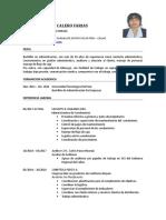 Maritza Calero actual 2017- convocatoria primer concurso publico 2017.doc
