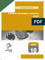 Aula 10 - A dinâmica dos grupos e o processo.pdf