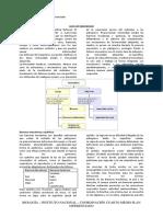 4-Biología-Electivo-Guía-Inmunidad (1).pdf