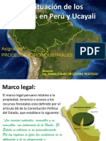 Clase2-La Situación de Los Bosques en Perú y Ucayali