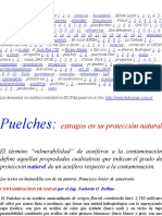 Acuifero Puelches