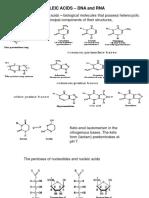 Nucleic Acids Part 1