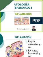 6._Inflamacion