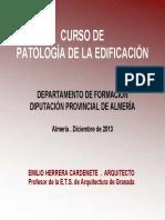 2013 DOCUMENTACION CURSO PATOLOGIA.pdf