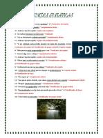 Correção Funções Sintáticas (4)