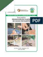 guia_produccion_de_cacao_por_injerto.pdf