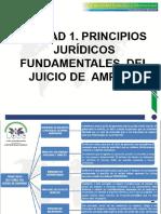 UNIDAD 1. PRINCIPIOS JURIDICOS FUNDAMENTALES DEL JUICIO DE AMPARO.pdf