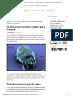 13 Excelentes Remedios Caseros Para La Sarna -Plantas Medicinales - Remedios Caseros - Medicina Natural