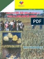 Cultivo del ajo. N° 84. Gobierno de Chile