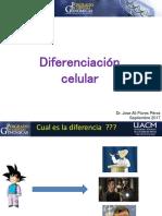 Diferenciacion Celular 2017
