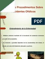 Acidente Ofídico Atualizado Dr. Pedro 2